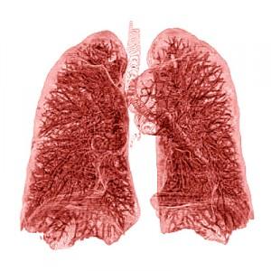 Normal Range of Methacholine Responsiveness in Relation to Prechallenge Pulmonary Function: Analysis