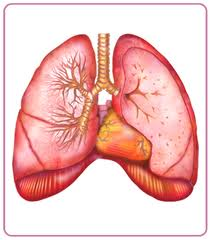 Chronic Cough Due to Asthma: Recommendation